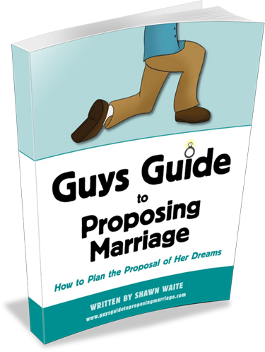 Guys Guide to Proposing Marriage eBook Cover