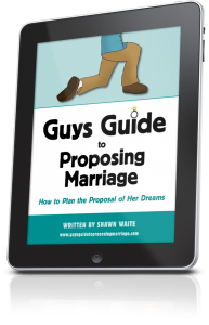 Guys Guide to Proposing Marriage iPad
